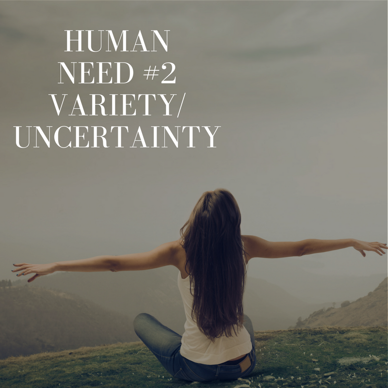 Human Need # 2 – Variety / Uncertainty